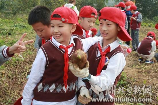 武汉试点中小学研学旅行 课堂开进农场以自然为师