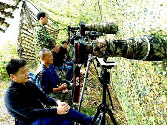 图二、潜江市观鸟协会成员在返湾湖国家湿地公园开展水鸟监测(毛枝庭摄)