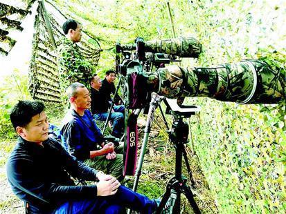 图为:摄影爱好者在返湾湖发现游隼。 (视界网 毛枝庭 摄)