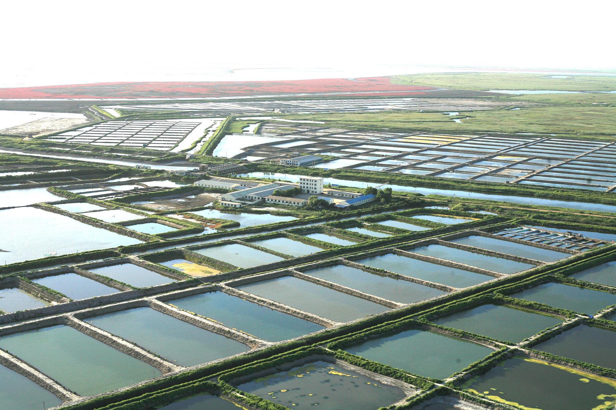 湖北一养殖公司违规湖中投肥被罚款190余万元