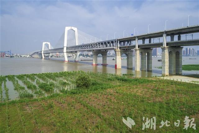 商合杭高铁全线通车 武汉至黄山可缩短40分钟