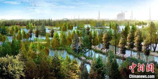 青山北湖长江森林效果图 武汉市园林和林业局供图