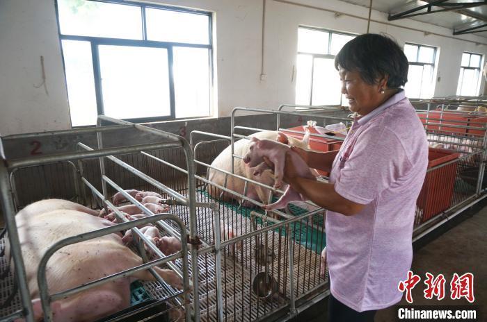 国家畜禽遗传资源目录公布 首次明确33种家养畜禽种类