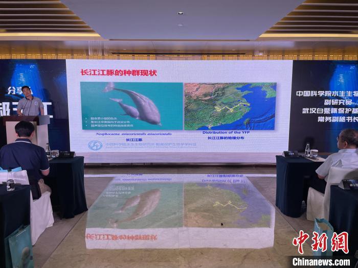 科研人员介绍长江江豚种群现状 马芙蓉 摄