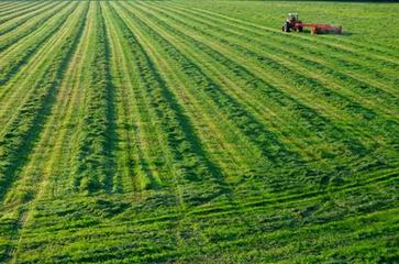 湖北补充耕地指标网上交易 成交金额40多亿元