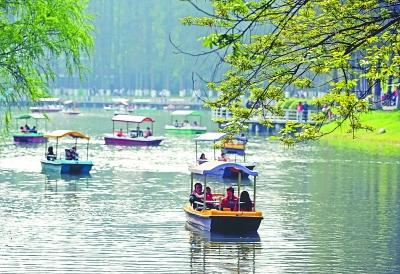 昨日,市民在解放公园内湖上泛舟 记者肖僖 摄