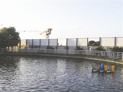 恒升公司基地内最大的中华鲟养殖池,围墙外就是芈月桥工地