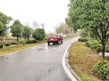 图为机动车行驶在后官湖绿道内