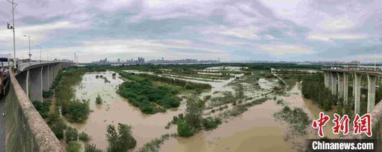 扒口行洪后的武汉天兴洲,江水已漫进洲内 谢米特 摄