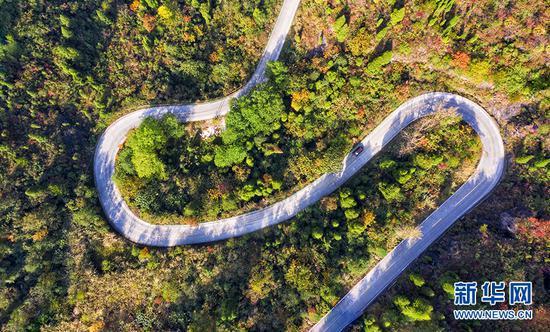 图为湖北宜昌市建成的乡村公路。新华网发