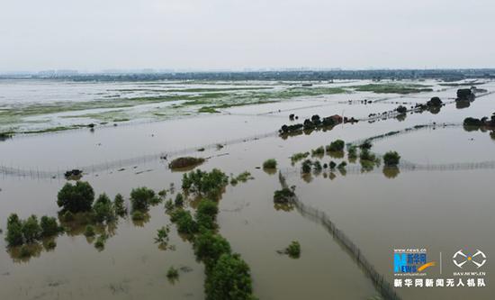 连日来,沙洋县后港镇长湖水位持续上涨。新华网发 赵平摄