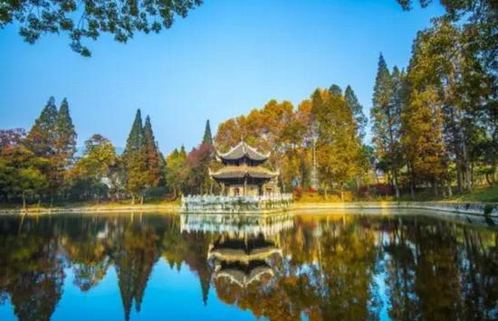 国家级森林城市——襄阳(图片:凤凰网)