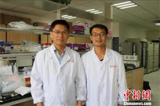 资料图:李红良教授(左)和王志华教授(右)。杜巍巍 摄