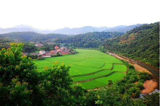 京山绿林山美人谷