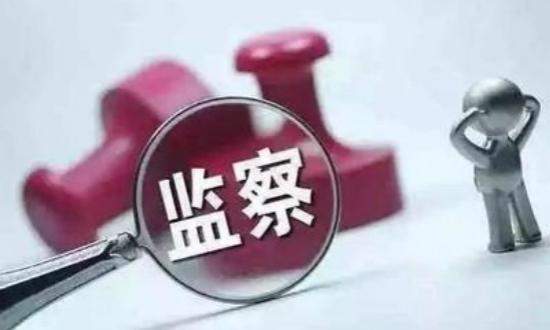 武汉市汉阳区政府办公室二级调研员陈昌贵接受调查
