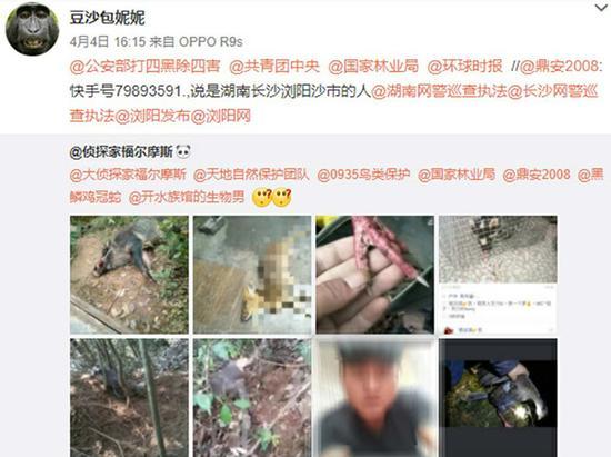 网友举报何某直播平台发布野外捕猎。
