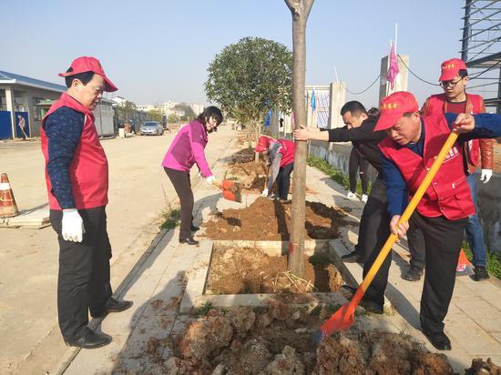 黄陂城管基层中队纷纷参加义务植树活动