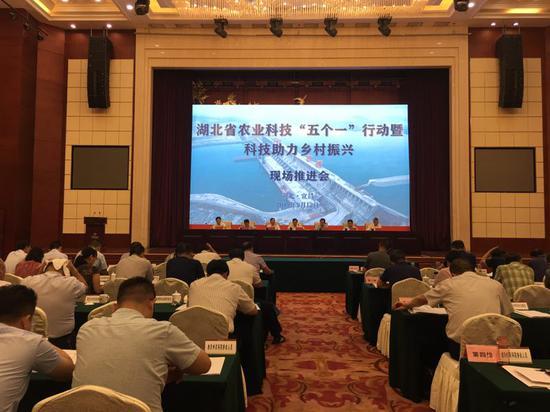 """湖北省农业科技""""五个一""""行动助力乡村振兴"""