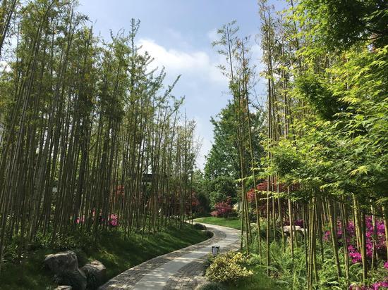 院士建言武汉园博园调整生态 增大乔木灌木比