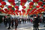 湖北迎来春节旅游开门红 首日实现旅游收入759万元