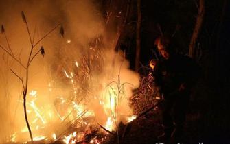 湖北汽车工业学院后山起火