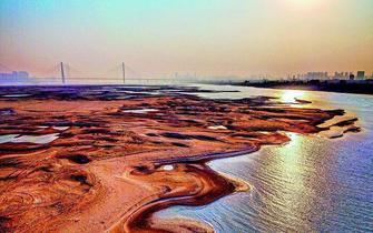 """世博国际官网江水位下降 裸露滩涂现""""沙漠""""景观"""