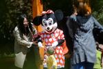 老人扮米老鼠与游客合影 称为儿媳筹款治病