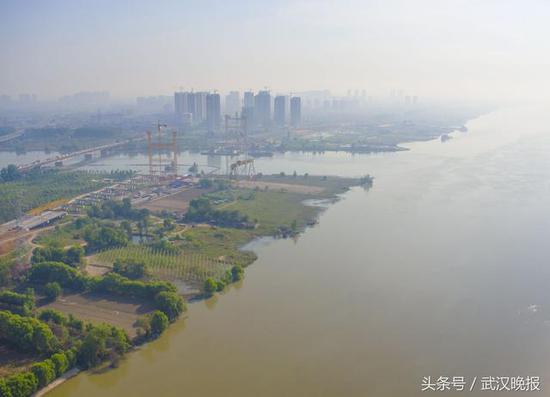 武汉晚报记者 周迪 摄