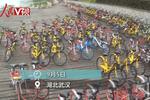 已有近70万辆!武汉共享单车将暂停新增投放