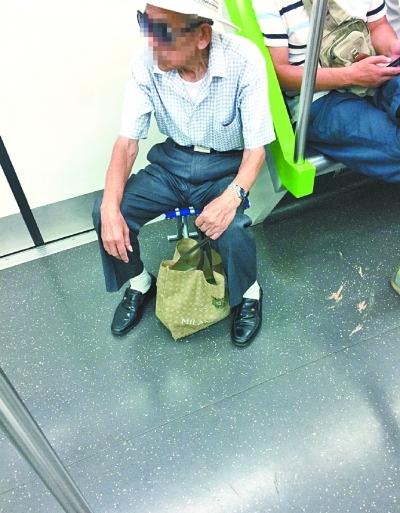 自带板凳坐地铁(肖女士供图)
