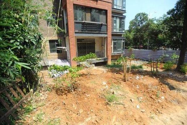 一楼业主为建私人院子铲草砍树引众邻居不满