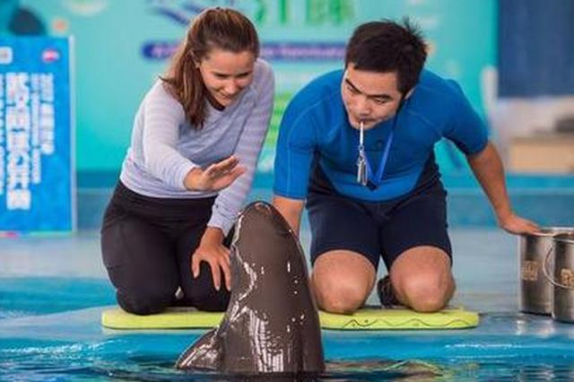 美国网球女星武汉握手江豚 曾因黄蜂蜇伤臀部被逆转