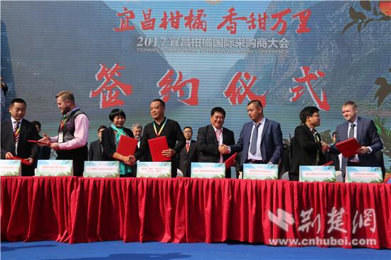 宜昌10家柑橘企业与国外经销商现场签订销售柑橘协议