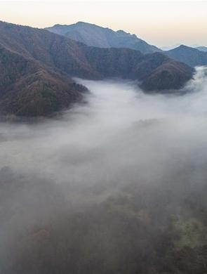 梦幻神农架大九湖
