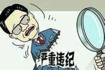 黄冈一干部接受纪律审查和监察调查