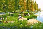 """武汉这个地方将变成湿地 """"城市蓝心""""将更加迷人"""