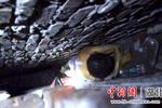 http://n.sinaimg.cn/hb/transform/250/w150h100/20190819/dab5-icmpfxa1337340.jpg