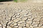 湖北16市65县受灾 抗旱Ⅳ级应急响应启动