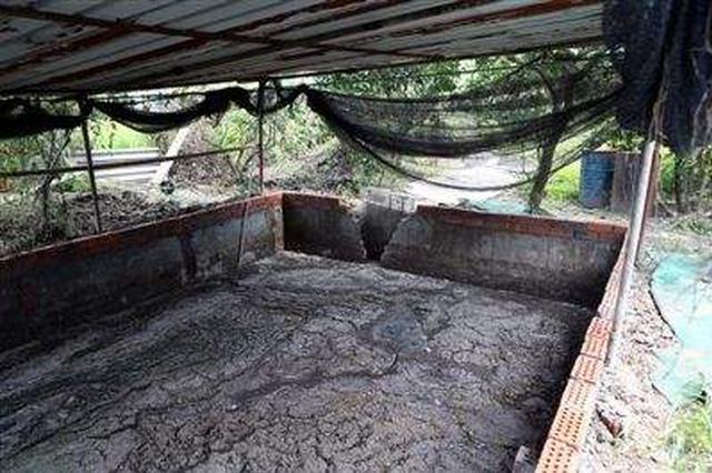 十堰一养猪户将猪粪便直排入河 被判赔偿40余万元