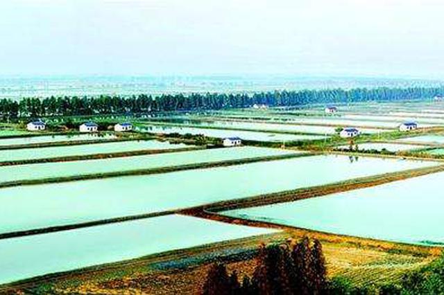 首个小龙虾生态试验中心落户洪湖 投资3000万元