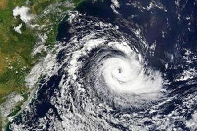 """台风""""玛莉亚""""来袭 湖北省防办:积极防汛防台"""