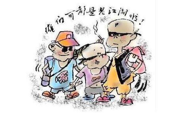 枣阳警方打掉一未成年人盗窃团伙 涉案16起
