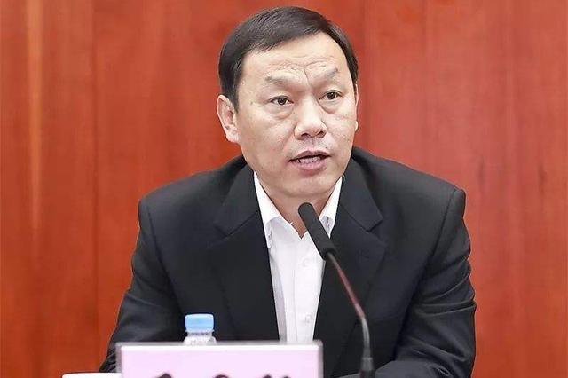 湖北省委副书记马国强兼任武汉市委书记