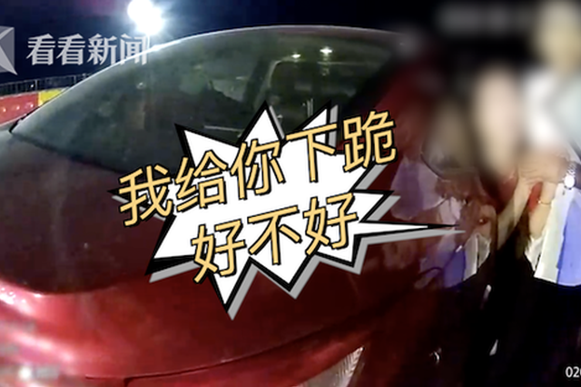 湖北女子高速练车遇交警检查 浑身抽搐大喊大叫(图)