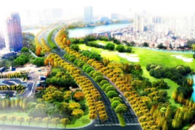 武汉临空港大道进行绿化改造 预计本月底启动