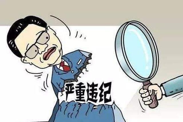 武汉市委政法委常务副书记周滨等2人接受审查调查