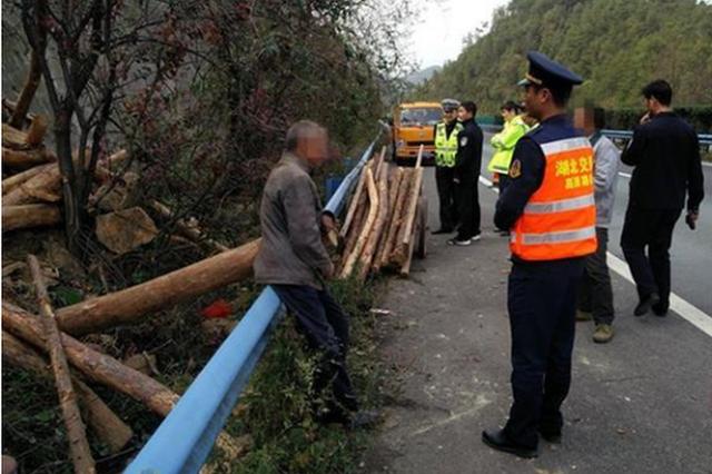 十堰一對父子高速公路上砍樹 欲逆行1公里拖回家中
