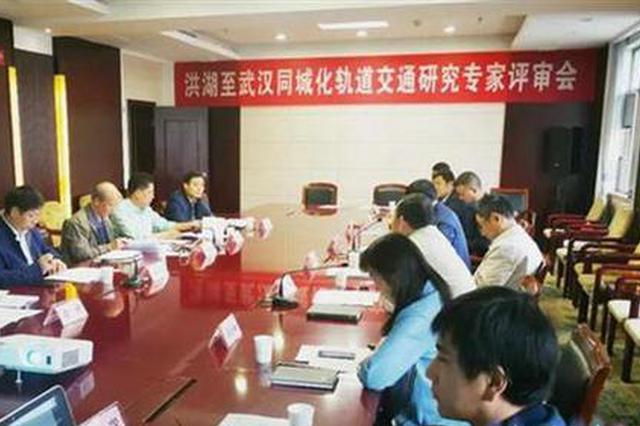 洪湖至武漢同城化軌道交通項目通過專家評審