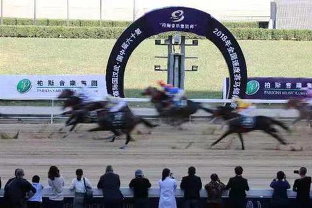 全國速度賽馬錦標賽在漢舉行 80匹國內頂尖賽駒決戰