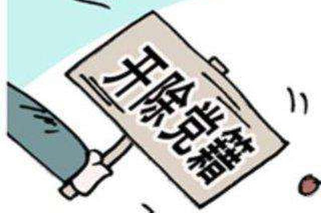 武汉化工区管委会原工委委员、总工程师高成喜被双开